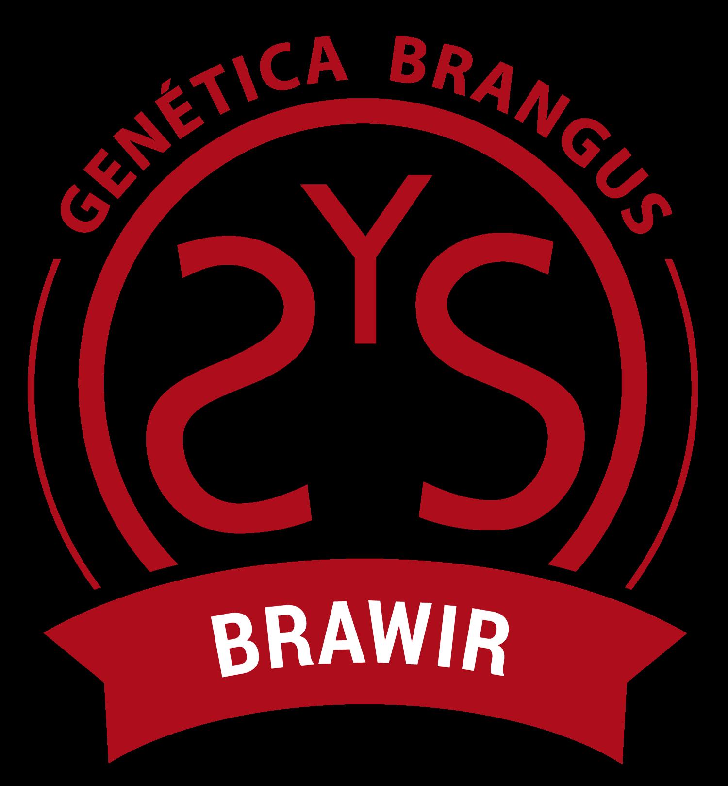 Brawir Genética Brangus!